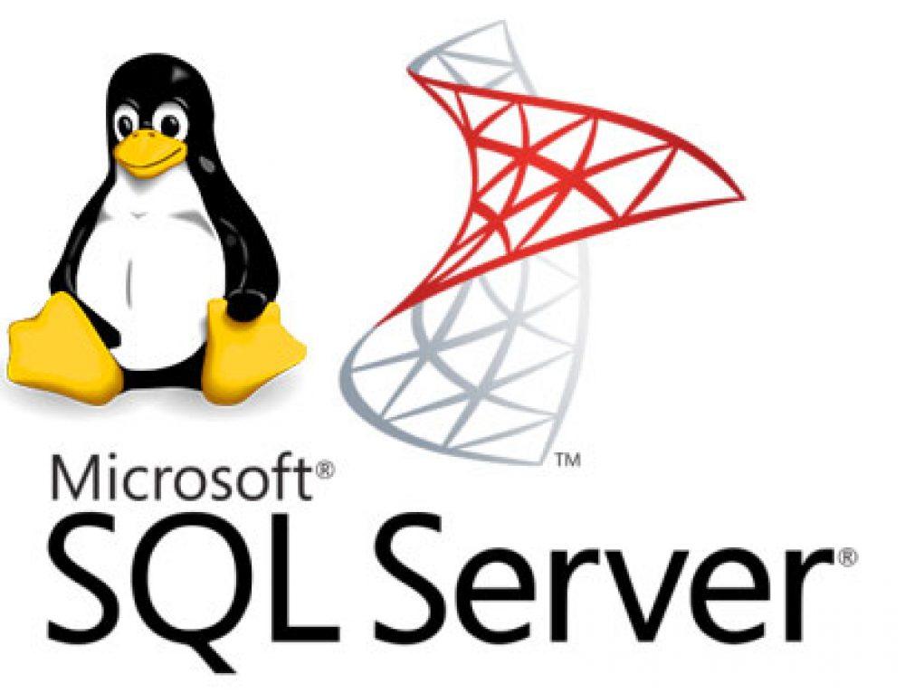 Microsoft lancia la versione SQL Server per Linux