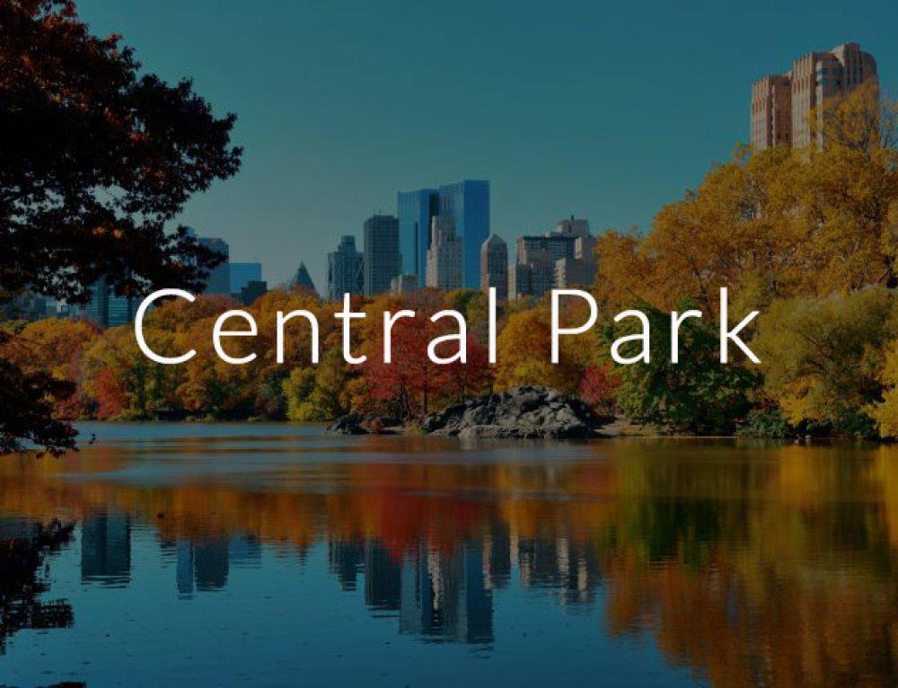 Central Park, la terza release del Manager